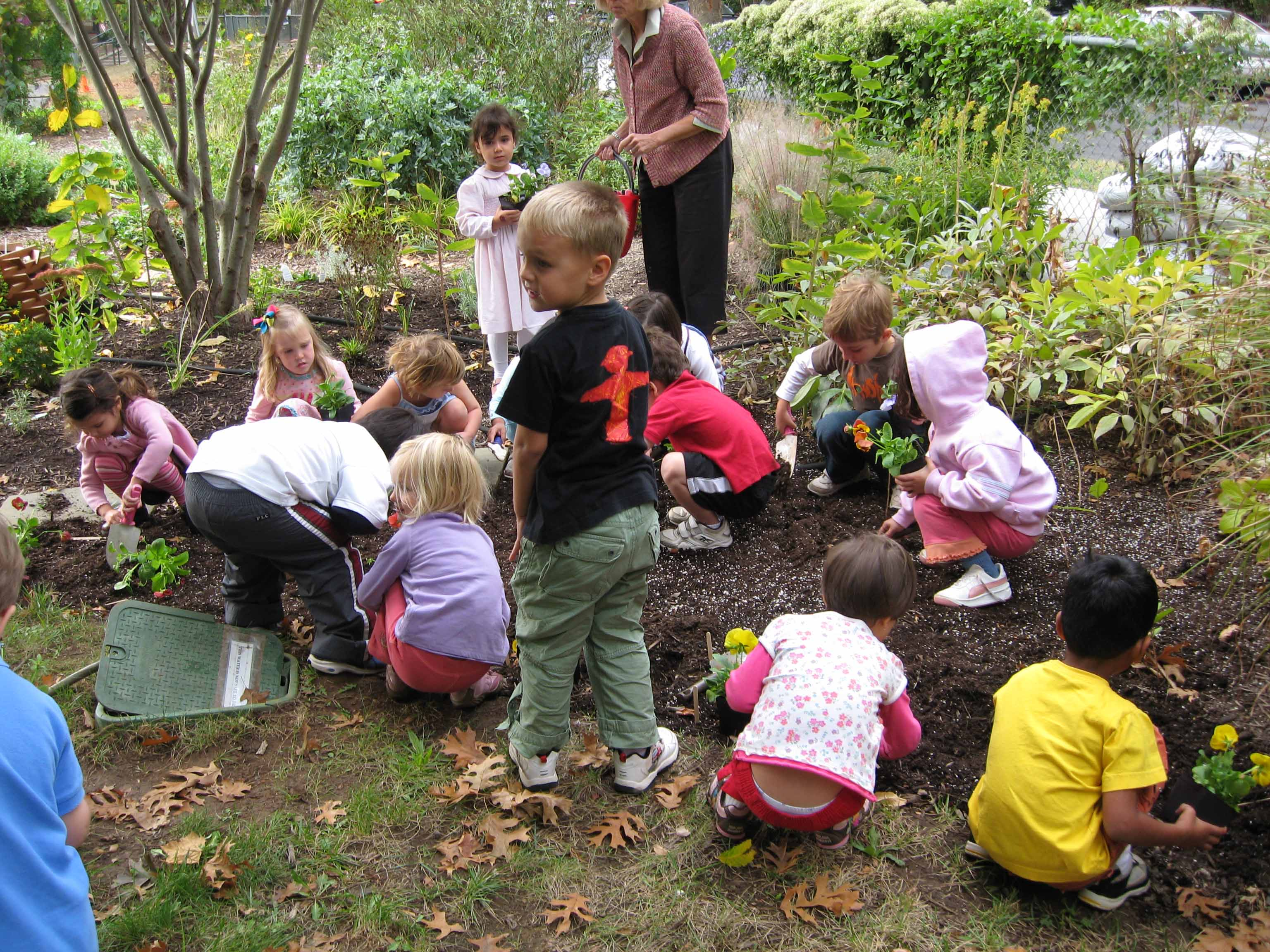 environmental education and play in swedish The emerald research register for this journal is available at the current issue and full text archive of this journal is available at wwwemeraldinsightcom/researchregister wwwemeraldinsightcom/1467-6370htm ijshe 6,1 environmental management in swedish higher education directives, driving forces, hindrances, 18 environmental.