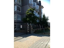 Langley City Condo for sale:  1 bedroom 445 sq.ft. (Listed 2014-07-18)