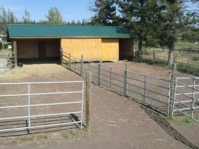 Foaling Shed-Nursery