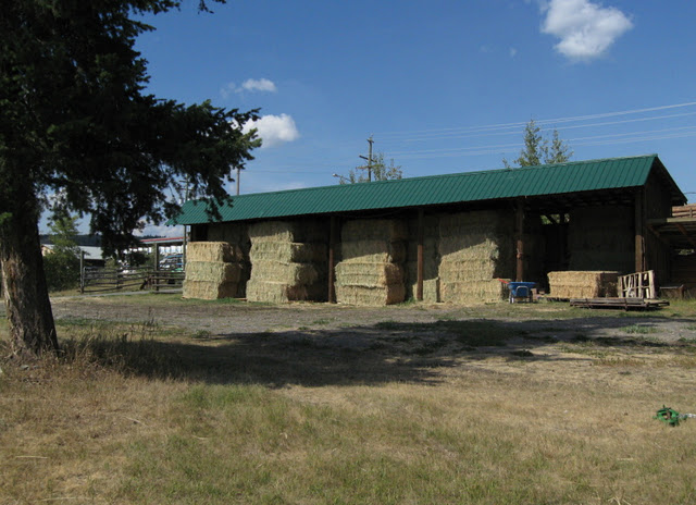 Hay Shed
