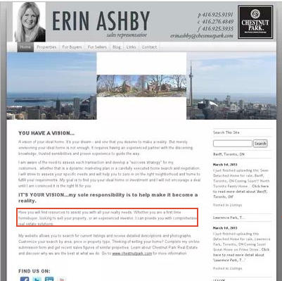 Erin_Ashby_Website_Before