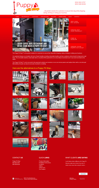 Puppy Pit Stop Website 400