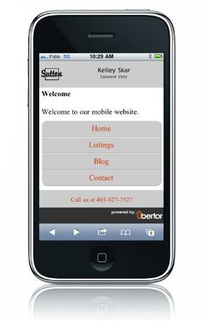 Mobile Websites 2