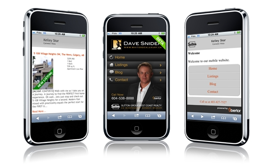 Mobile Websites 1