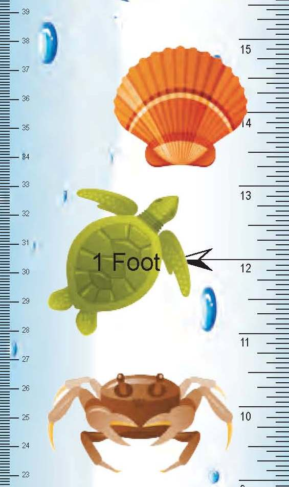 Close-up of Under Water Growth Chart