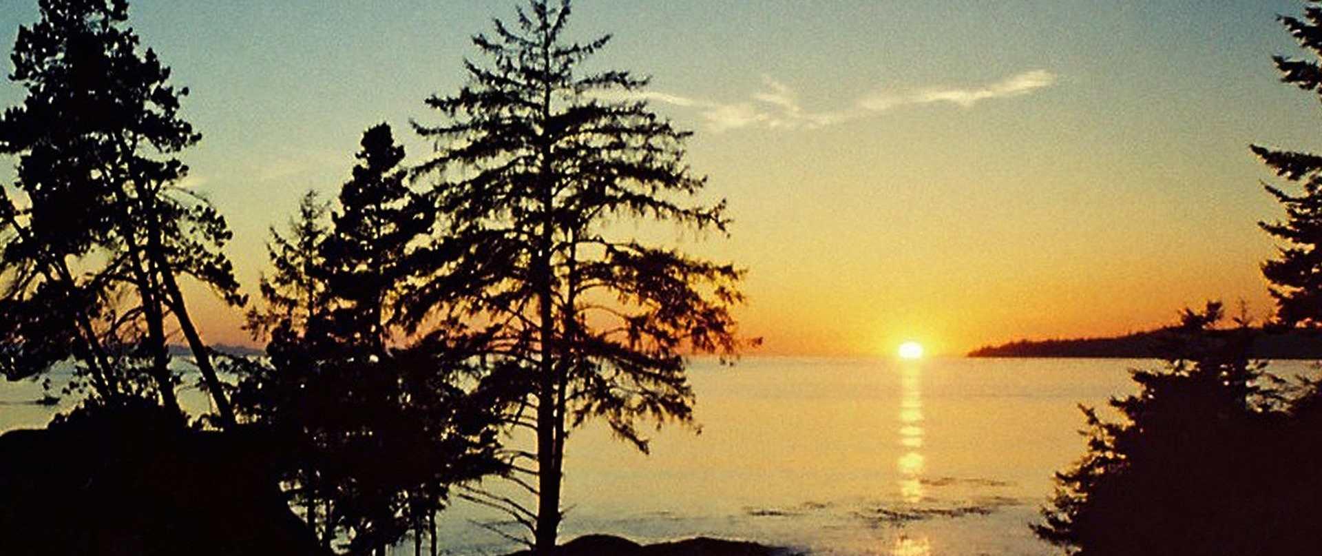 sunset-hi-res-2-2mb-copy-copy-version-2.jpg.1920x807_default.jpg