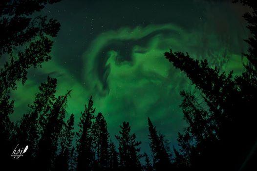 cm auroras 2013:08:15 HPJ photo.jpg