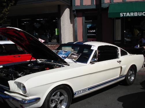 Oak Bay Car Festival 1966 Shelby MustangGT 350