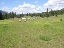 Rock Creek BC / Land / Acreage / Hobby Farm / House / Home / Ranch / Farm / For Sale / MLS © Real Estate Listing Jennifer Brock Macdonald Realty Okanagan South / Kootenay Boundary