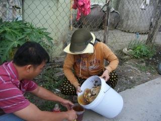 Vietnam honey