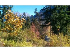 Pemberton/Birken Vacant land for sale:    (Listed 2014-04-07)