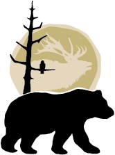 VI Guide Outfitters logo