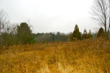 Cobourg Ontario Country acreage for sale:    (Listed 2015-12-14)