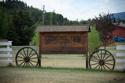 Smithers BC - 220 Acre Farm for sale.