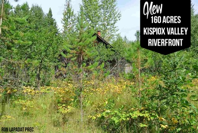 Kispiox Valley Bare Land  for sale:  Studio  (Listed 2017-01-01)