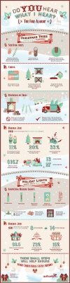 Christmas Tree Fire Safety 2