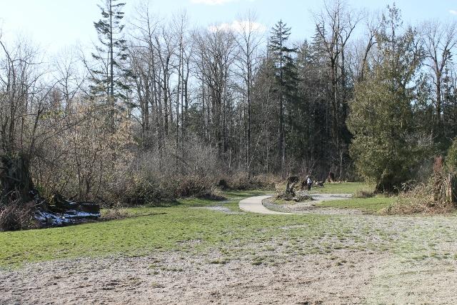 Clayton dog park large dog section