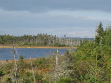 Guysborough water front-vacant lot. for sale:  N/A  (Listed 2015-10-19)