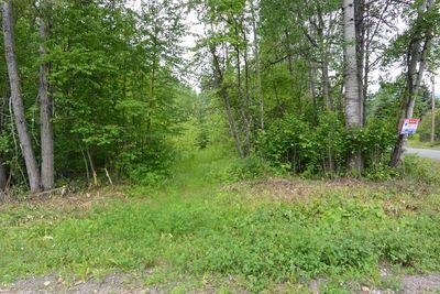 Hazelton BC Land For Sale | Only $59,500