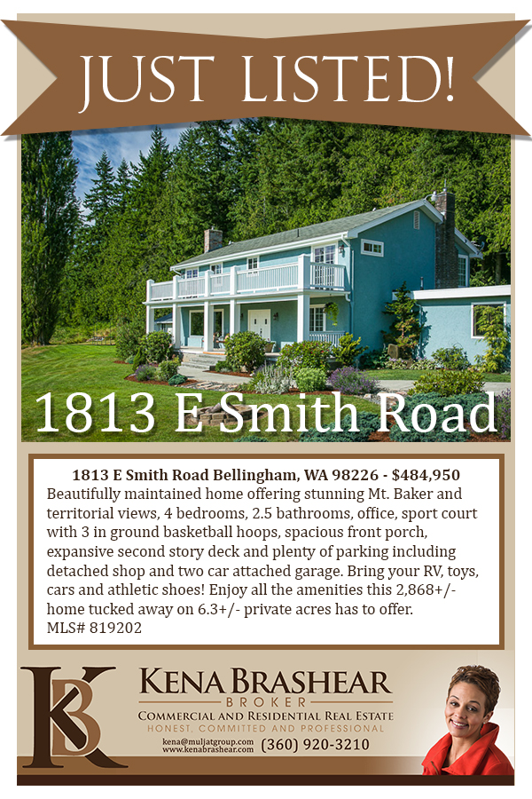 1813-E-Smith_just-listed-flyer.jpg