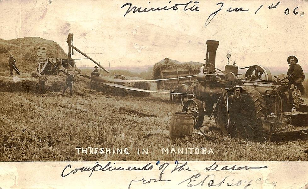 Boyce, Brock - Threshing in Miniota 1906