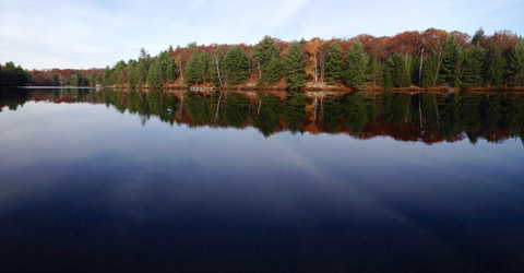 Otter Lake cottages south of Parry Sound