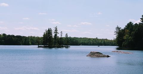 Deer Lake, South River