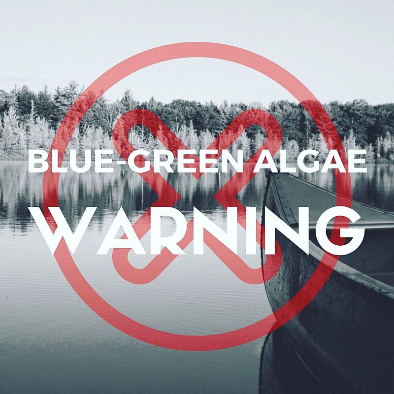 Blue - Green Algae Warning