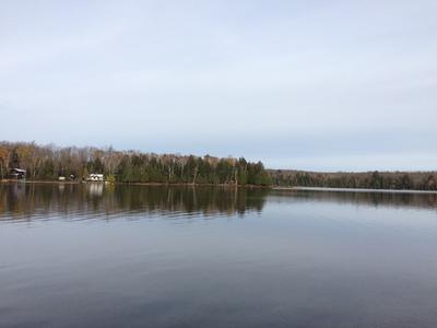 Spring Lake waterfront lot   209' lakefront, 1.39 acres