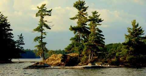 Lake Rosseau Cottage