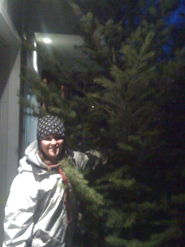 katie and tree