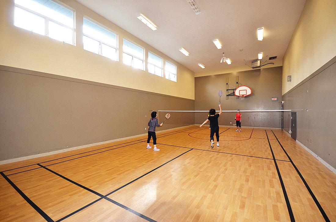 Klahanie 1/2 basketball court