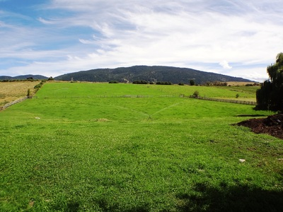 North BX Acreage for sale - 21.6 Acres - Vernon, BC Real Estate