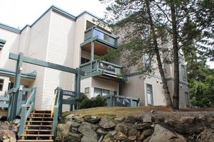 Lake Side Condo for Sale at Tamarisk in Whistler, Creekside