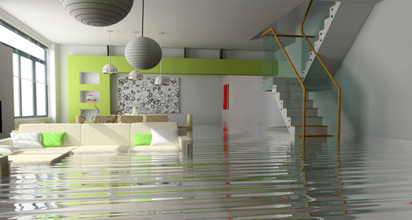 Protect Your Home From Water Damage