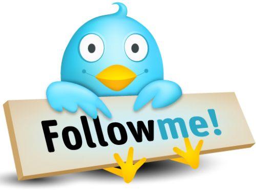 follow-us-on-twitter-bird.jpeg
